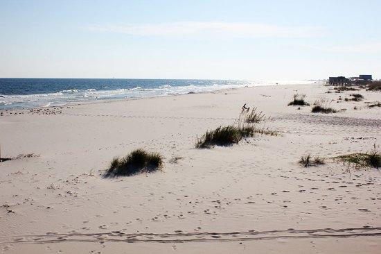 August beach trip